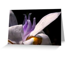 Portrait of an Iris Greeting Card