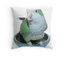 A loving parrot Throw Pillow