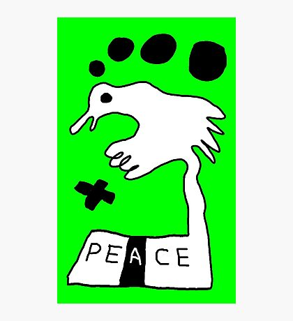 The Troubled Peace Dove Photographic Print