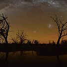 Swamp Arch by Wayne England