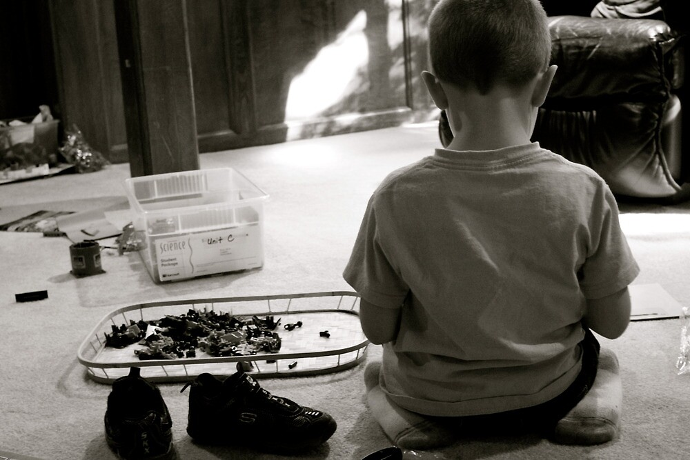 A boy and his legos by Schultz5