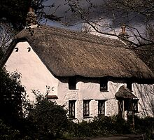 Thatched Cottage by Country  Pursuits