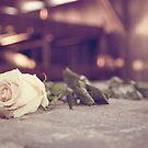 In Memory by Julie McBrien