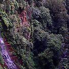 Twin Falls. by MardiGCalero