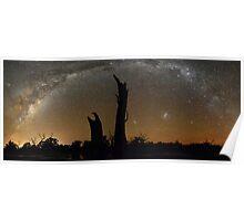 Milky Way Over Tree 'Chimneys' Poster