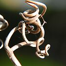 Twists and Turns by Heather Crough