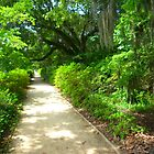 Middleton Place, Charleston, South Carolina by Gordon Taylor