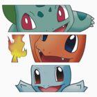 Pokemon - starters by Falconpaunch