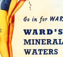 Wards Mineral Water Swimsuit Vintage Advertisement Sticker