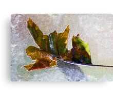 Dry Brush Leaf Canvas Print