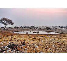Waterhole in Etosha National Park/ Namibia 1 Photographic Print