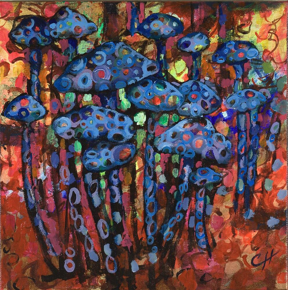 Mushrooms by cynthiaholland