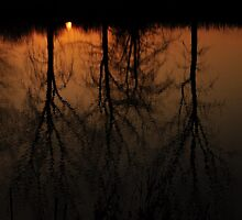 Sunset Refection by Jessica Farkas