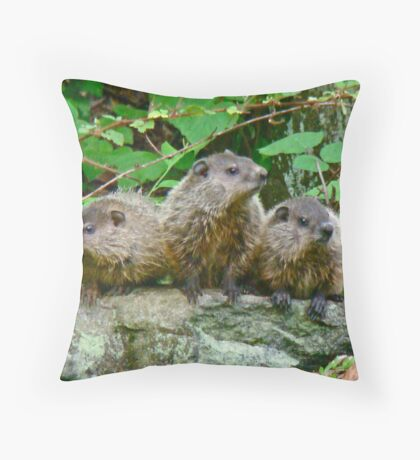 A Trio of Trouble   Throw Pillow