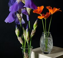 Iris and Poppies by Lee LaFontaine
