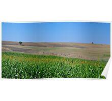 Italian Landscapes Poster