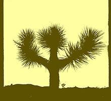 Joshua Tree (version 3) by Peter B
