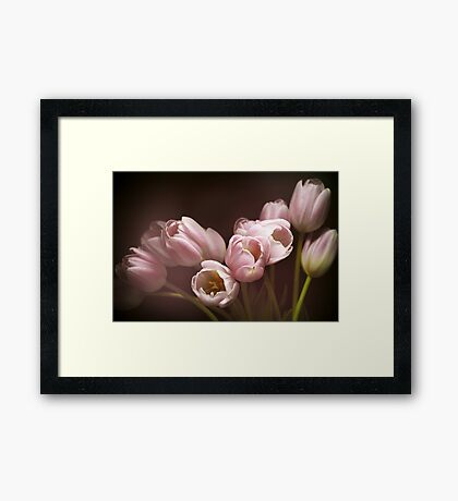 Those pink tulips Framed Print