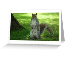 Who is watching who? Greeting Card