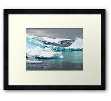 Penguin iceberg Framed Print