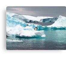 Penguin iceberg Canvas Print
