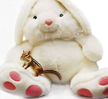 The White Rabbit & 'Tiny' by Laurie Minor