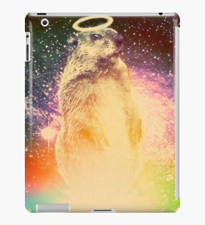 Off the Ground iPad Case/Skin