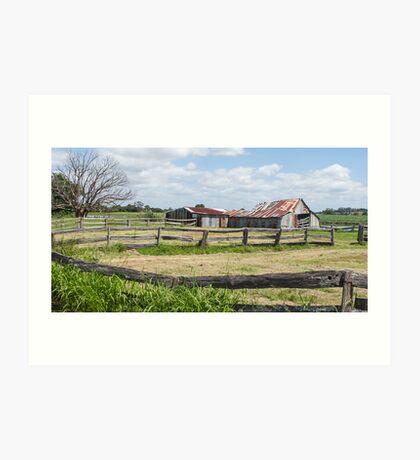 farm fences Art Print