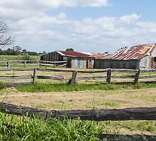 farm fences by Anne Scantlebury