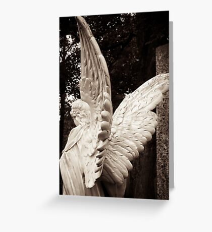 sublime angel wings Greeting Card