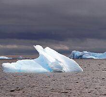 Icebergs , Antarctica by geophotographic