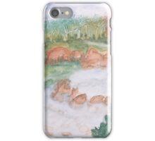 Rocks in the stream. iPhone Case/Skin