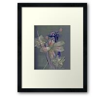 Just a memory... Framed Print