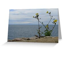 Seaview Greeting Card