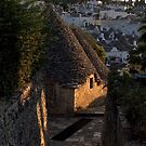 Alberobello by Ommik