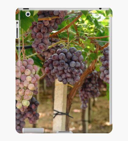 Italian Vinyard iPad Case/Skin