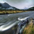 The Misty Mountains - Cascade Creek  by Michael Treloar