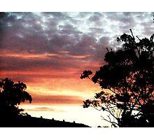 Backyard Sunset Photographic Print