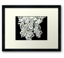 Pure Silver As Crystal Framed Print