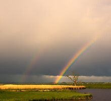 The rainbows by THHoang