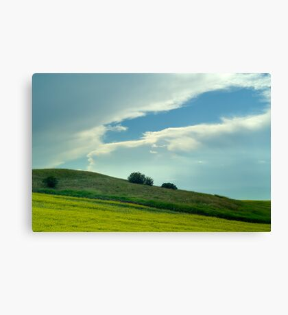 Alberta - Drive by Shooting Canvas Print