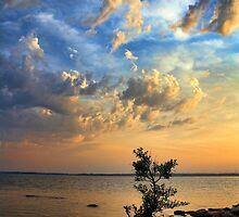 Land's End Sunrise by Carolyn  Fletcher