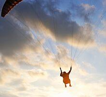 Paraglider flying at sunset, Provence, France by Sami Sarkis