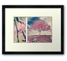 Blossoms of Spring Framed Print