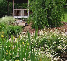 Daisies And Gazebo by Carolyn  Fletcher