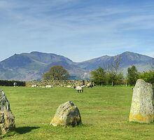 Stones,Sheep & Mountains by Jamie  Green