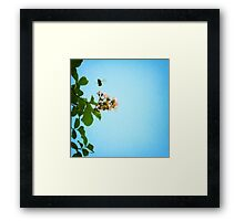 bee with me Framed Print