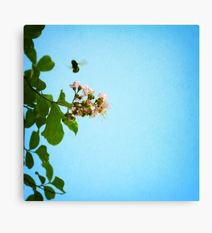 bee with me Canvas Print