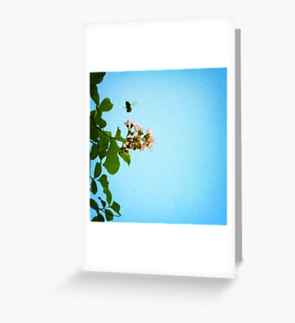 bee with me Greeting Card
