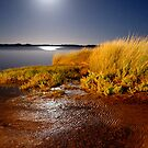 estuary moon by Naia